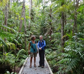 Fogg Dam Monsoon Forest Walk  (photo copyright Mike Jarvis)