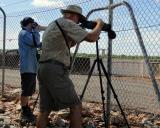 Mike Jarvis and Peter Kyne observing White Wagtail at Leanyer STP  (photo copyright Mike Jarvis)
